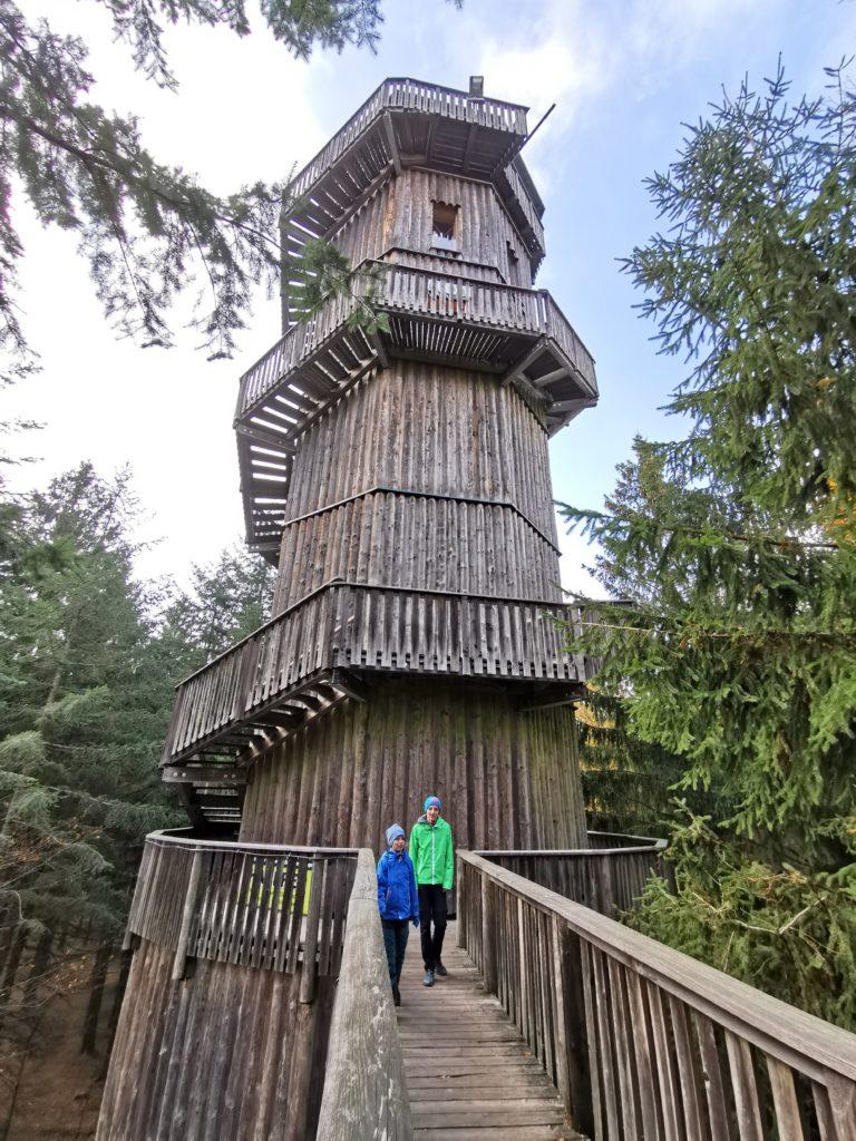 Der 40 Meter hohe Aussichtsturm am Baumkronenweg Kopfing